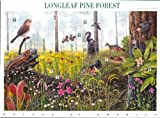 Longleaf Pine Forest (Nature of America), Full Sheet of 10 x 34-Cent Postage Stamps, USA 2001, Scott 3611