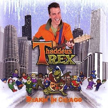 Shakin' in Chicago