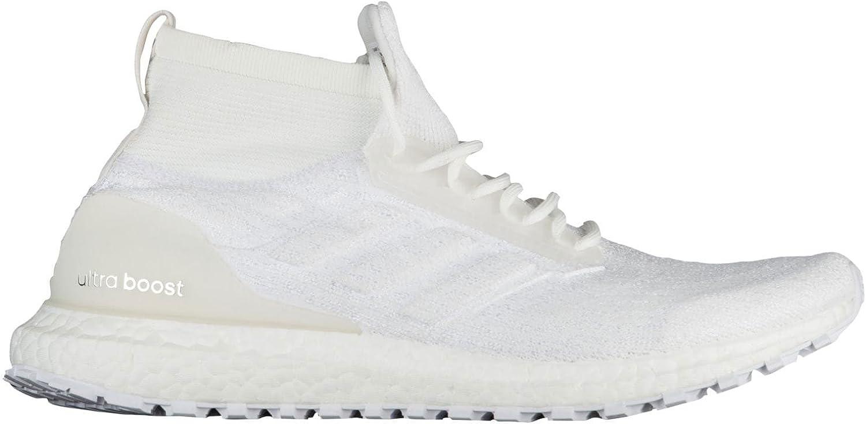 adidas Ultraboost All Terrain Schuh Herren Running B079QGRDCF  | Online Outlet Shop
