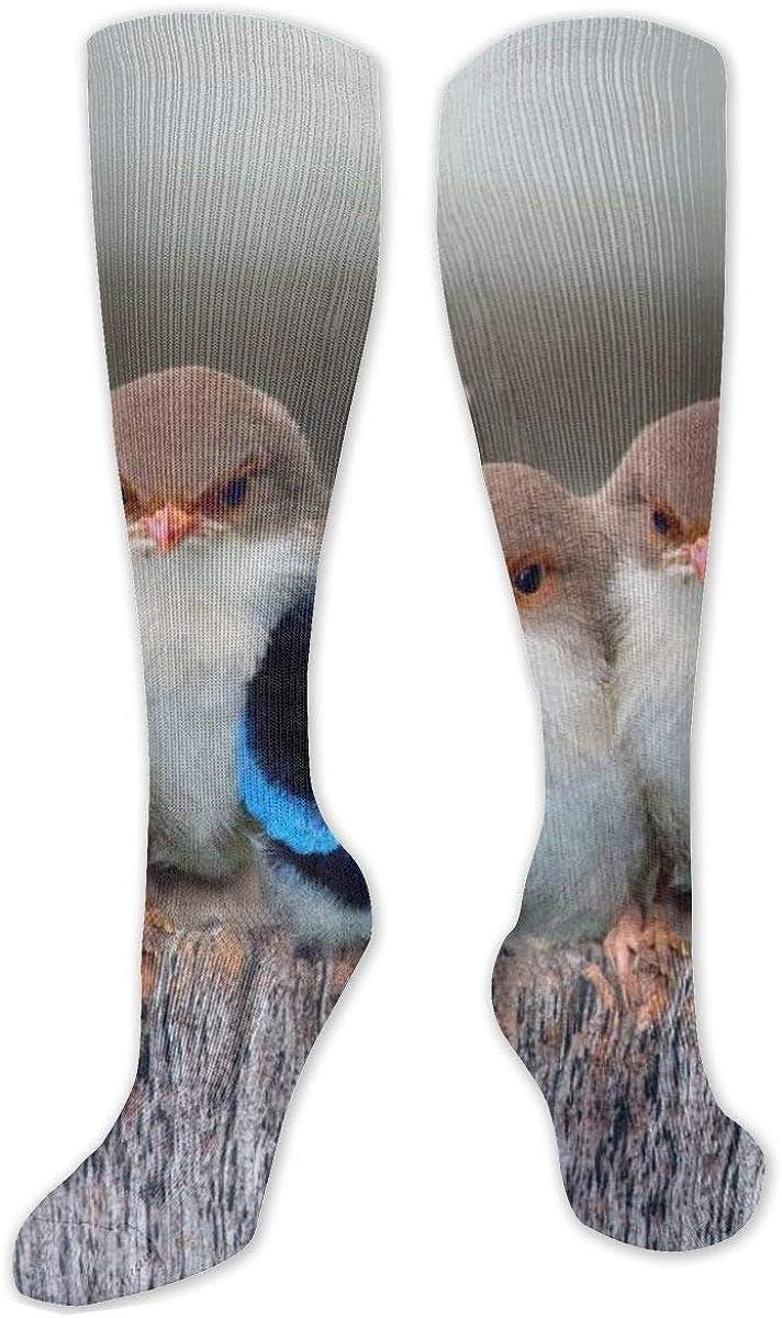 Little Bird Knee High Socks Leg Warmer Dresses Long Boot Stockings For Womens Cosplay Daily Wear