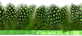 Moonlight Feather | 1 Yard - Chartreuse Green Guinea Hen Plumage Feather Trim Wholesale Supplier Costume, Craft, Halloween Feathers