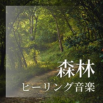 森林ヒーリング音楽 - 自律神経に優しい音楽, 鳥や水音の自然音