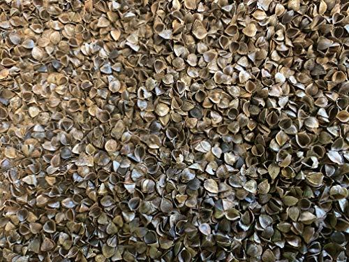 PERFECT PILLOW Lolla di grano saraceno biologico, della migliore qualità ad un prezzo più basso – per riempire i giocattoli per bambini, materassi, cuscini, cuscini da meditazione ecc.in modo sicuro –Scopri le meravigliose forme del miracolo di madre Natura, il Santo Graal delle imbottiture.I nostri agricoltori hanno coltivato la lolla eticamente e biologicamente con amore per il nostro prezioso pianeta, Brown, 1 KILO