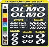 Adesivi Bici Olmo Kit Adesivi Stickers 20 Pezzi -Scegli SUBITO Colore- Bike Cycle pegatina cod.0413 (Bianco cod. 010)