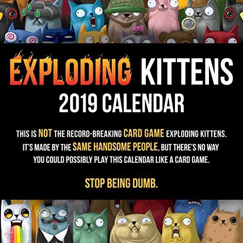 Exploding Kittens 2019 Square Wall Calendar