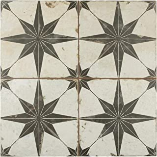 SomerTile FPESTRN Reyes Astre Ceramic Floor and Wall, 17.625