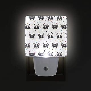 boston terrier lamp