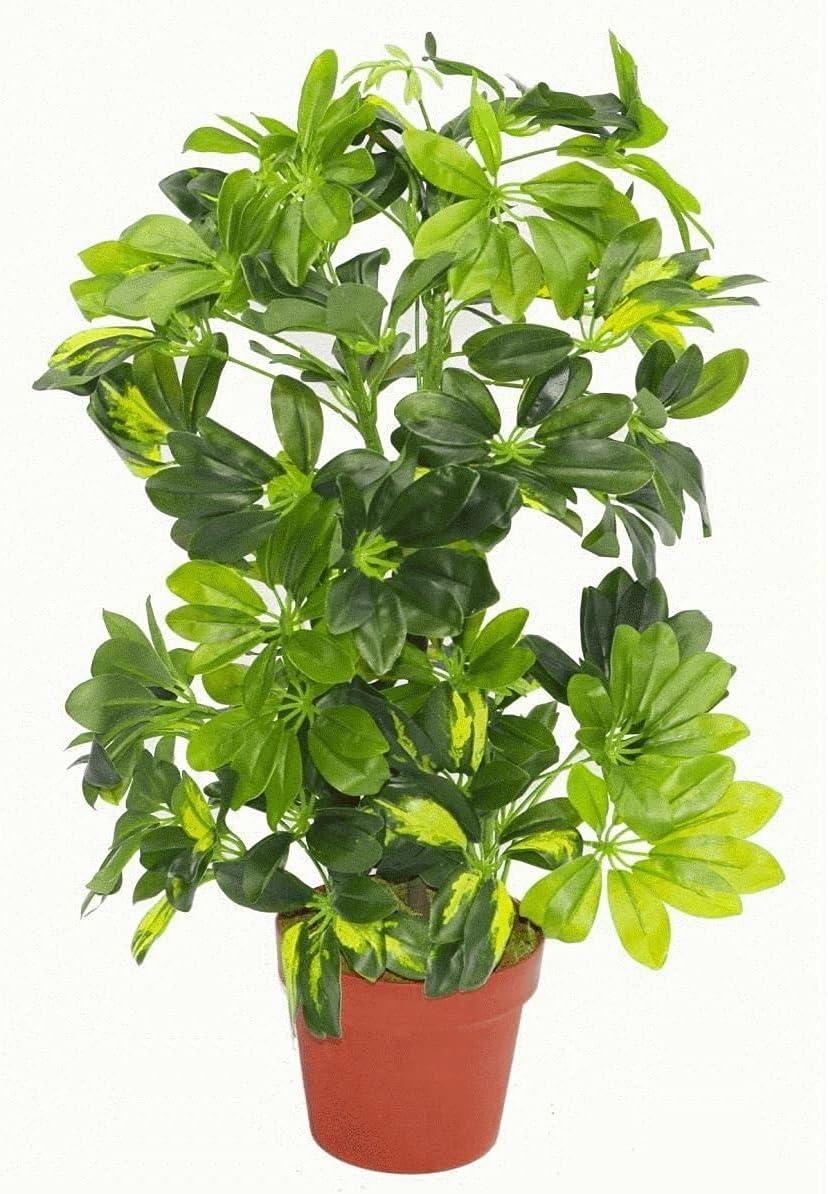 Leaf OFFer Artificial Very popular Arboricola Plant Evergreen
