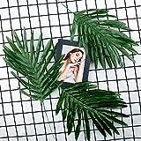 Comius Sharp Künstliche Cycas-Blätter, [12 Stück] Tropische Blätter, Dschungel Deko Palmenblätter Dschungel Strand Thema Party Hochzeit Dekorationen Tischdekoration - 5