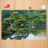 Tappeto da bagno antiscivolo 50X80 cm,Paesaggio fluviale giapponese con alberi Fiori Pietre Silenzio nella foto a tema giardino asiatico d Tappetino da bagno morbido e assorbente