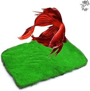 Luffy Moss, Lush Green Landscape in Aquarium, Betta Home, Create a Moss Carpet, Thrive with Minimal Care
