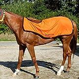 MIZUNO(ミズノ) 馬着 ブレスサーモ エクササイズラグ(乗馬用/2枚合わせ) 32JT5G2154 54)オレンジ×ブラック L