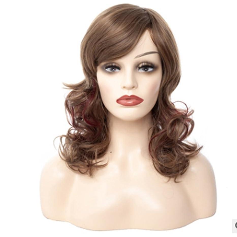 オープニング除外する繁雑Doyvanntgo 60cm女性の長いカーリーウィッグ斜めのつま先で自然なふわふわ茶色の偽のショーホワイトコンプレッション (Color : ブラウン)