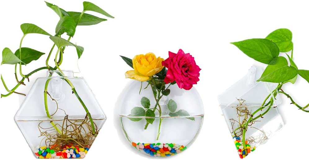 Wall Cheap mail order shopping Hanging Glass Planters Plant Recommended Terrarium Indoo Pots Container