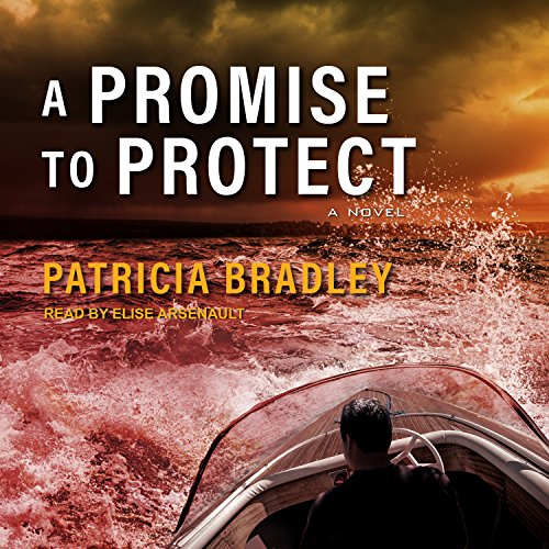 A Promise to Protect audiobook cover art