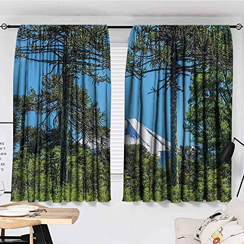 Bedroom Thermal Blackout Curtains, National Parks Home Decor, Alps beyond Pine Trees Andes Northern Region Snowy Mountains View, Courtyard Porch Gazebo Decoration, 55'x63', Green Blue