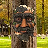 AGDLLYD Baum Gesichter,Baumgesicht Gartendeko,Baumgesicht Alter Mann,Greenman Deko,Lustige Gartendeko Figuren,Personalisierter Blumentopf für Gartendekoration und Hofkunst