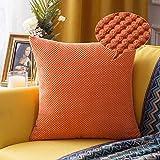 MIULEE 1 Stück Granulat Kissenbezug Ananas Weiches Massiv Dekorativen Quadratisch Überwurf Kissenbezüge Kissen für Sofa Schlafzimmer Auto 24'x24', 60 x 60 cm Orange