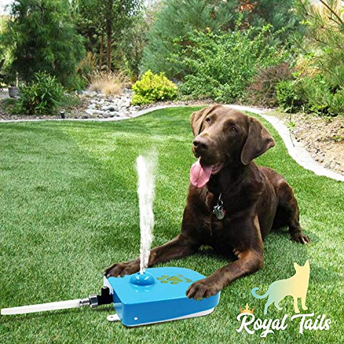 Royal Tails Water Drinking Fountain Automatic Paw Activated Dispenser Sprinkler Adjustable Pressure Flow Pet Cat Dog 1m Hose