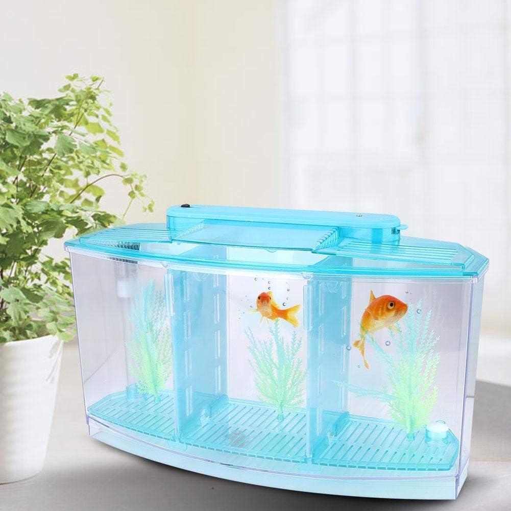 hong Adjustable Light Popular overseas Fish Aquarium A 25% OFF Transparent Acrylic Small