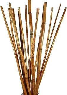 Best decorative vase with sticks Reviews