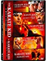 The Karate Kid 5-Movie Collection (The Karate Kid / The Karate Kid (Part 2) / The Karate Kid (Part 3) / The Next Karate Kid / Karate Kid)
