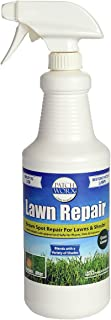 Patchworx Grass and Turf Paint, Designed to Cover Dog Urine Spots, 32 Ounce Pre-Mixed Ready To Use Spray Bottle - Grass Green