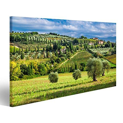 islandburner Bild Bilder auf Leinwand Olivenbäume und Weinberge in einem kleinen Dorf in der Toskana Wandbild, Poster, Leinwandbild GVM
