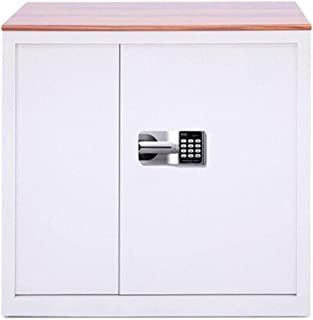 LJJSMG Diversion Safes Office Products Cabinet Safe Double Safe Password Cabinet Electronic Lock for Home and Office (Colo...
