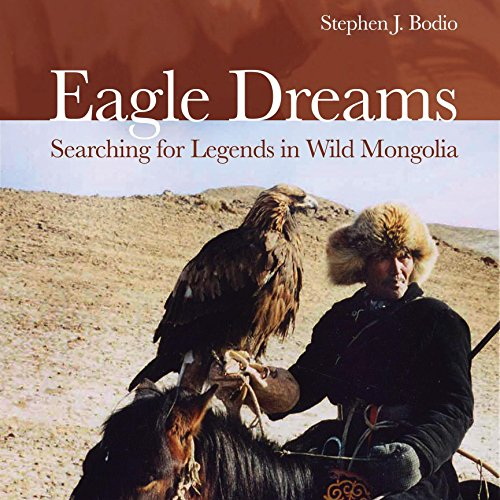 Eagle Dreams audiobook cover art
