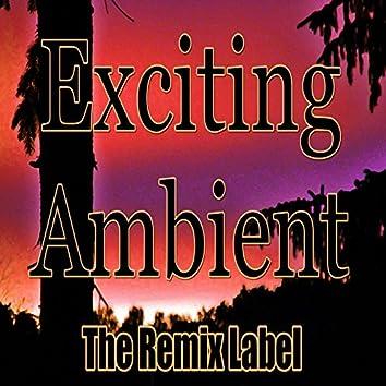 Exciting Ambient (Progressive Chillout Music Album Plus Bonus Megamix)