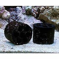 (海水魚 ろ材)海水用 多孔質シェルターろ材 HONEYCOMB(ハニカム)ブラック(バクテリア付き)1個 本州・四国限定[生体]