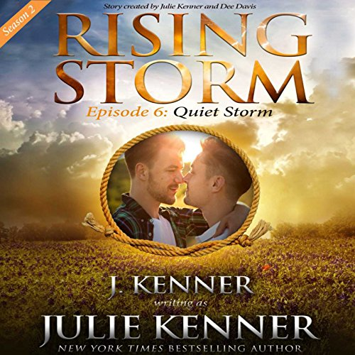 Quiet Storm audiobook cover art