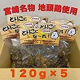 宮崎地鶏炭火焼き600g(120g×5) おつまみ お取り寄せ やみつき 宮崎県産