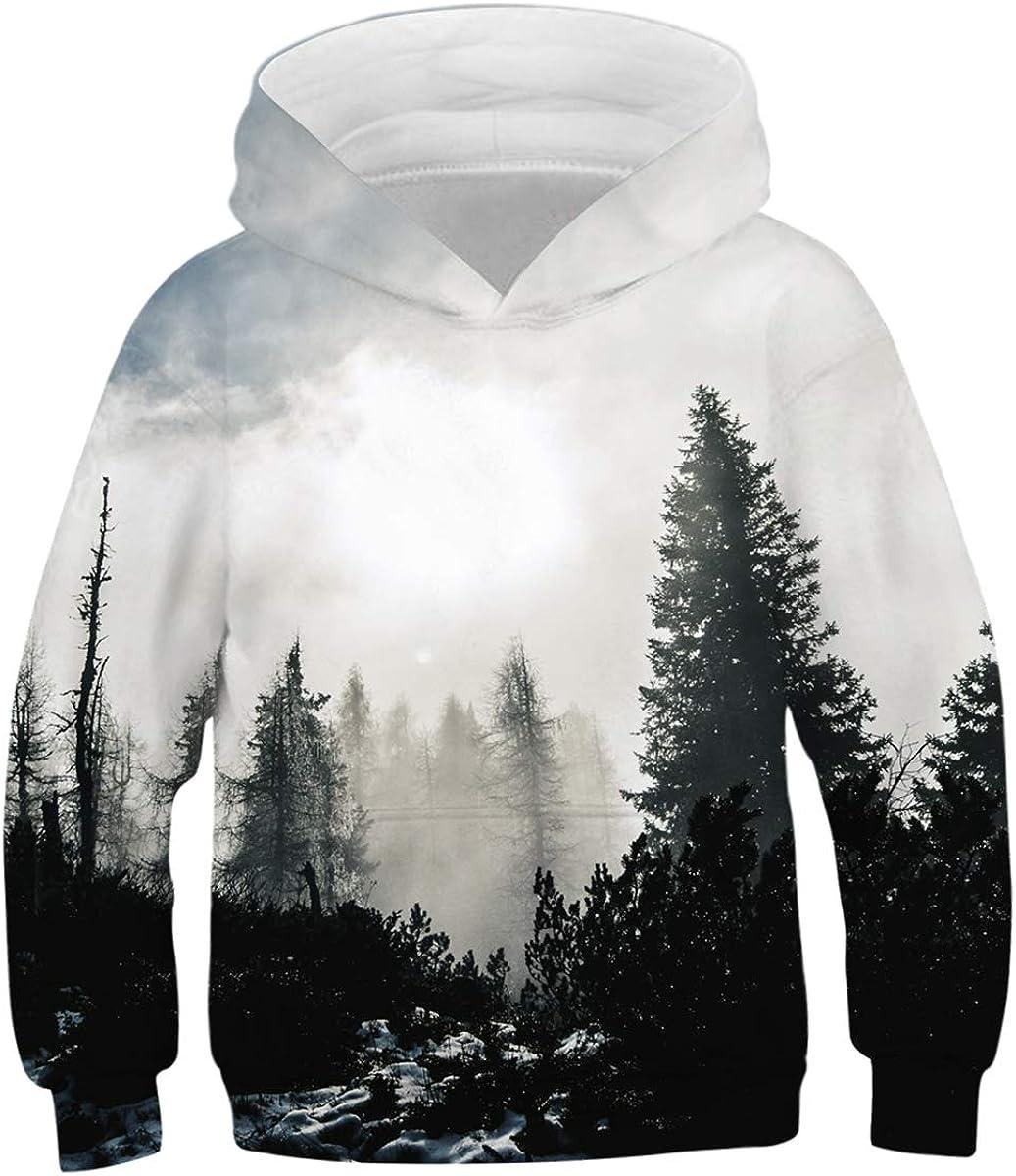 GLUDEAR Boys Girls 3D Print Graphic Sweatshirts Long Sleeve Pullover Hoodies