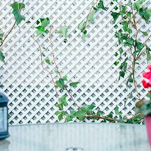 Celosia Pvc de 18 mm Panel Para Valla Jardin de 1 x...