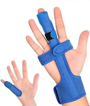 Finger zeigefinger kleiner Anatomy of