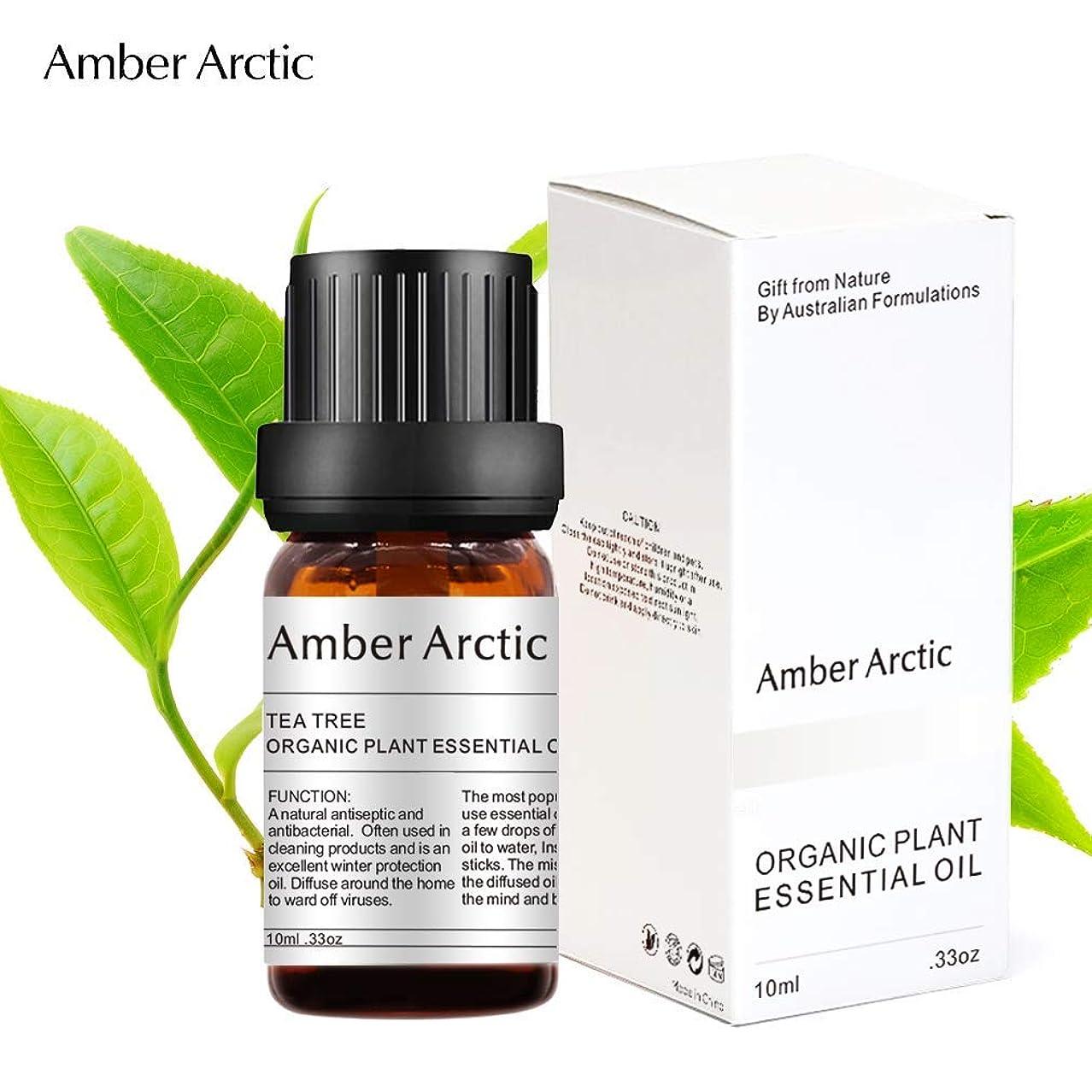 抜け目のないサロン腸Amber Arctic ティー ツリー エッセンシャル オイル - 100% 天然 アロマテラピー ティーツリー オイル スプレッド 用 (10ML) ティーツリー
