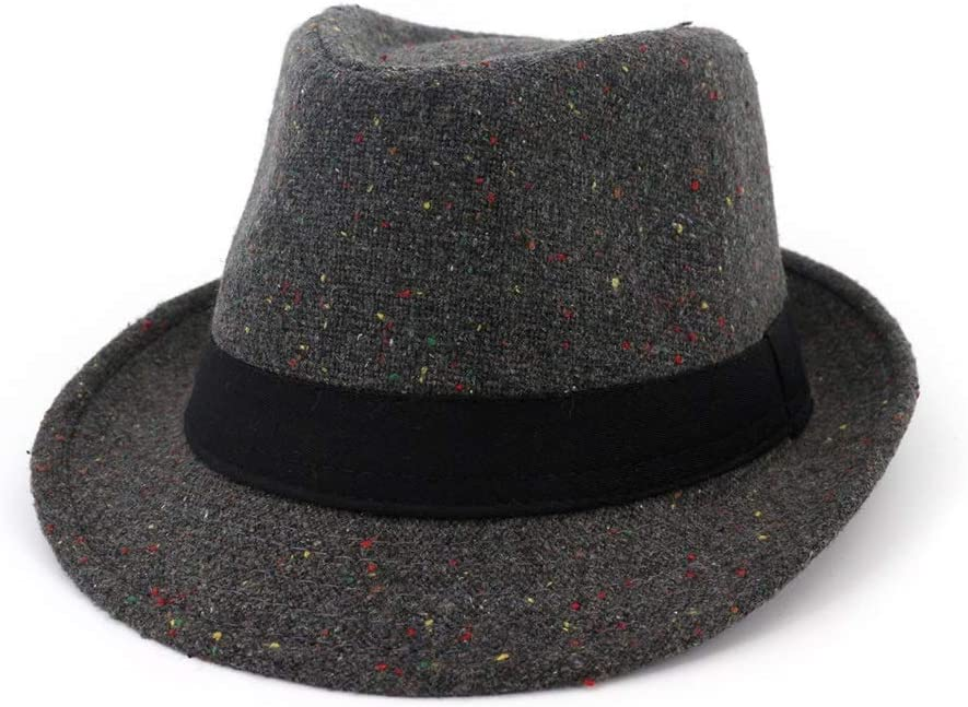ZLQQLZ Women Cap Unisex Women Men Wool Fedora Hat Autumn Winter Jazz Hat Panama Hat Size 56-58CM Hat (Color : Gray, Size : 56-58)