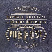 Accidentally on Purpose-Vinyl