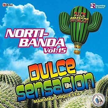 Norti-Banda Vol. 15. Música de Guatemala para los Latinos