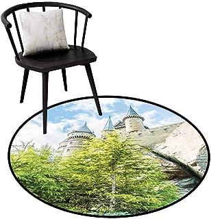 Best replica designer rugs Reviews