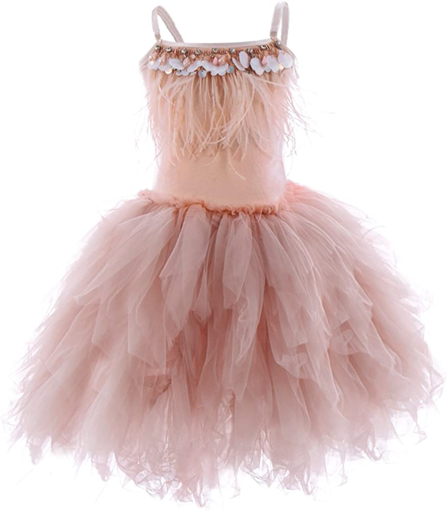 Swan Princess Feather New arrival Fringes Tiered Tutu Dre Tulle Flower We OFFer at cheap prices Girls