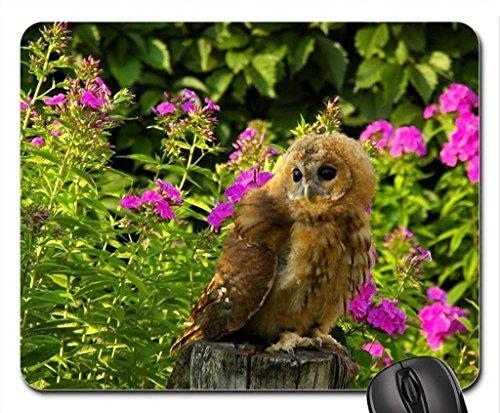 Ein palmer cute owl und pretty flowers mouse pad