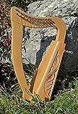 Arpa celta irlandesa de 12cuerdas, incluye cuerdas de repuesto