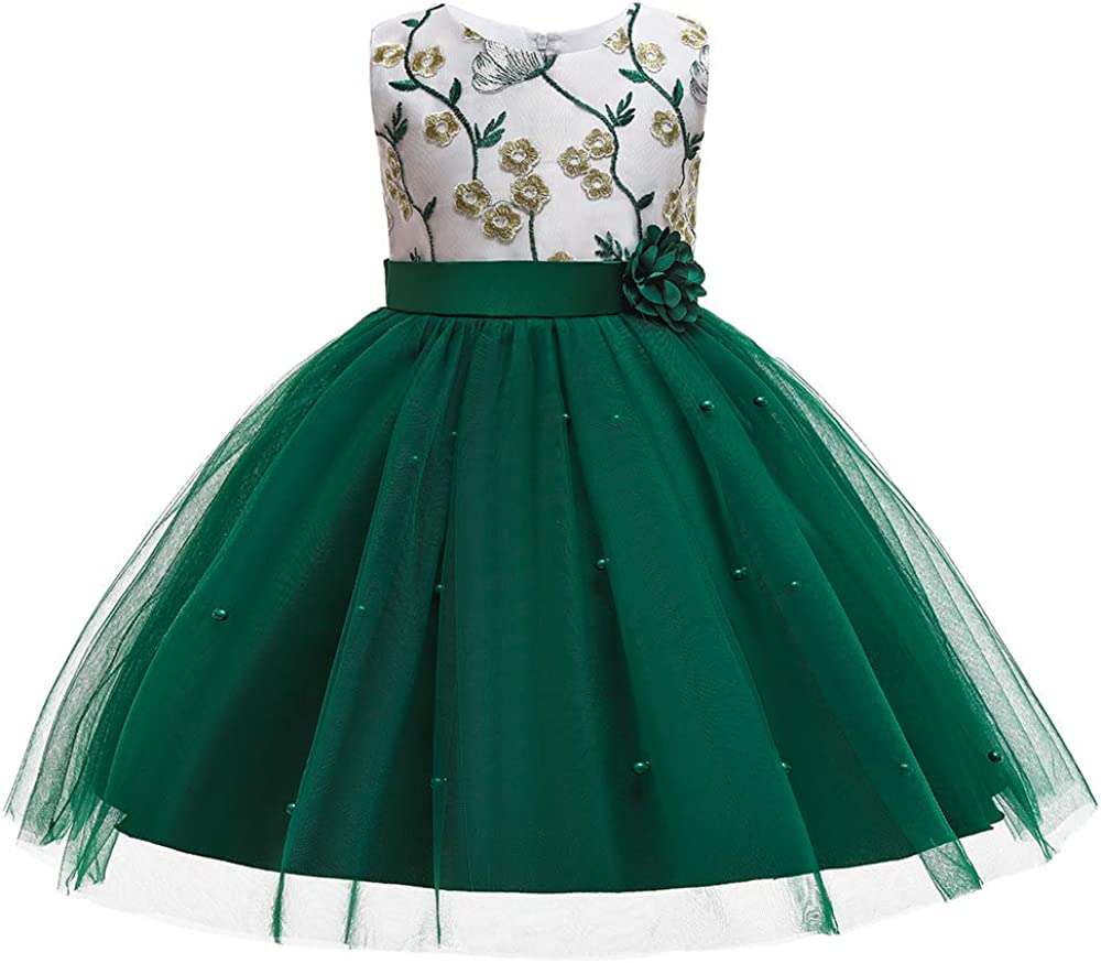 3M-9T Baby Girls Flower Dress Embroidery Pageant Party Wedding Lace Dresses