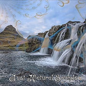 Just Natural Sounds