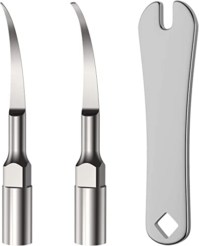 high quality 2pcs Stainless Steel Replacement 2021 Heads for Plaque Remover for Teeth(HogarTech Plaque Remover online and Yafex Plaque Remover) online