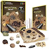 NATIONAL GEOGRAPHIC Mega Fossil Dig Kit – Excavate 15 Real Fossils Including Dinosaur Bones & Shark Teeth, Educational Toys, Great Gift for Girls and Boys, an AMAZON EXCLUSIVE Science Kit