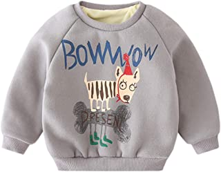 Fairy Baby Toddler Baby Unisex Winter Fleece Outfit Cartoon Sweatshirt Thick Pullover